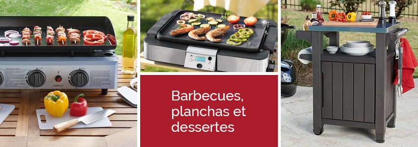 Barbecues, grills, planchas