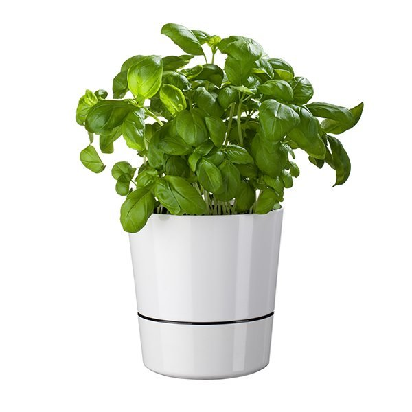 Pot hydro pour herbes aromatiques blanc Mepal zoom