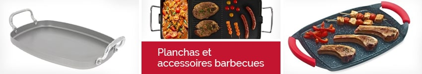Barbecue et planchas