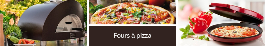 Fours à pizza
